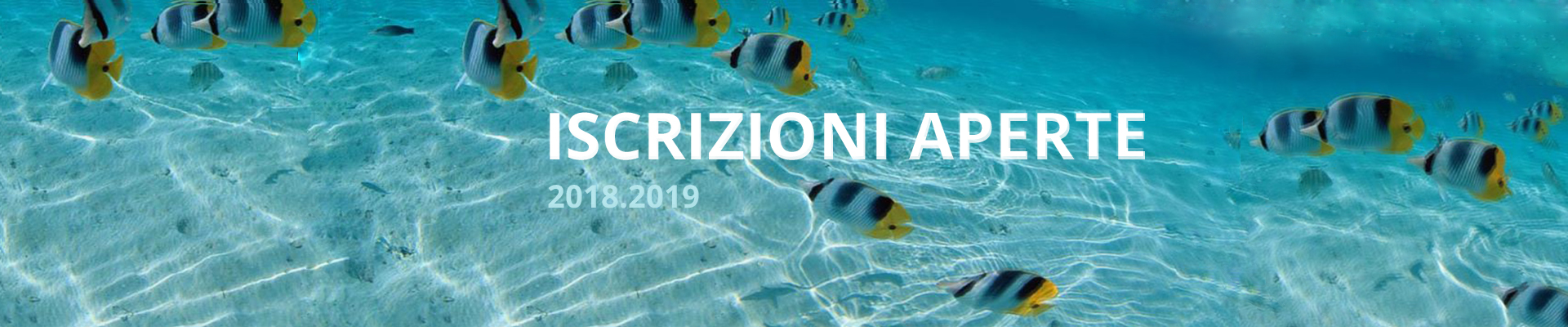 banner-iscrizioni-2018